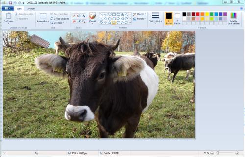 Microsoft Paint mit Ribbons